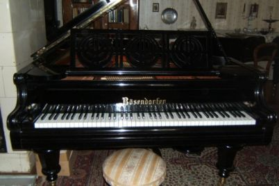 zongora1.jpg